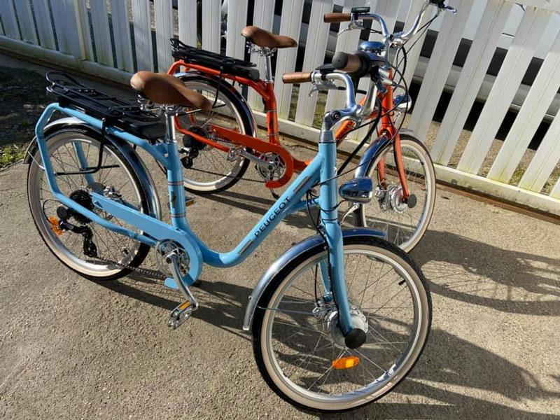 Olyzenvous accompagne à vélo électrique