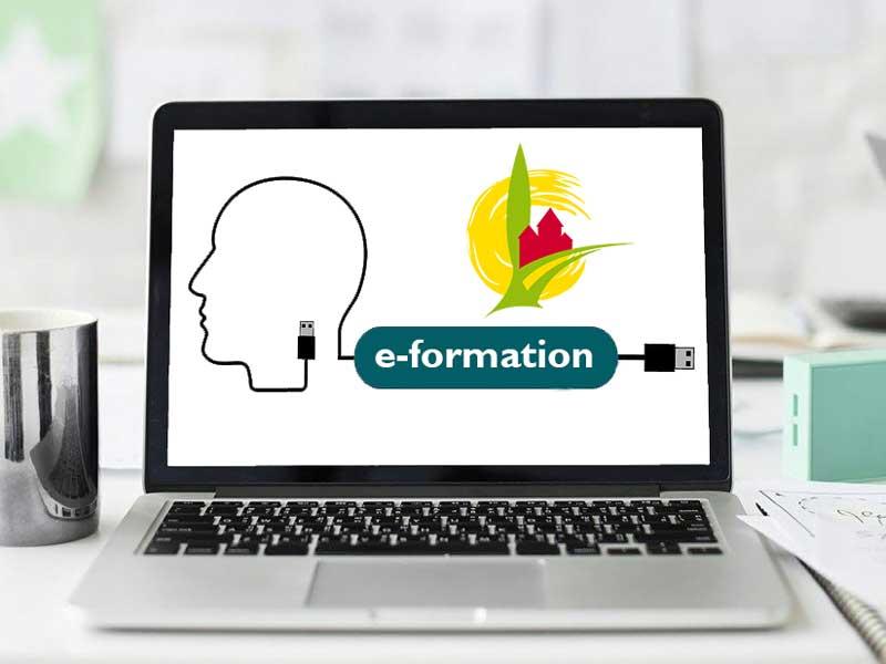 Formation en ligne : une première