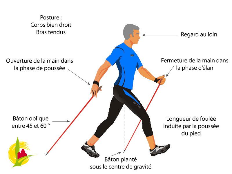 Read more about the article Sortons pour une marche nordique adaptée !