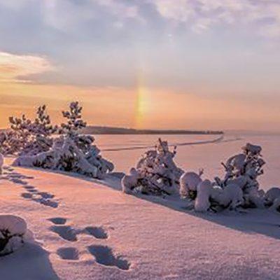 paysage_Lapon